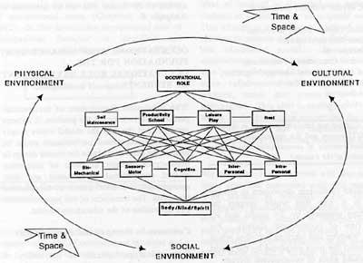 Poor people likewise 2007 352 bio25ps as well Occupational Performance Curriculum Theorising In Occupational Therapy as well Crossbreeding Systems furthermore Donnarumma stelarc. on expectation diagram