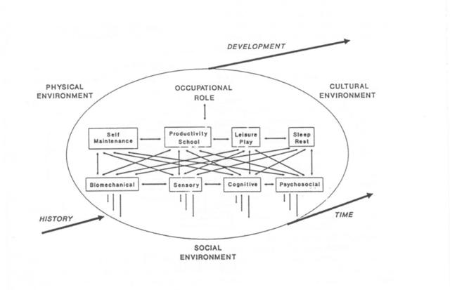 Towards a model: Appendices (OPMA schematic diagrams 1992a, 1992b ...